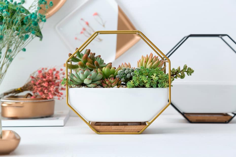Hanging Wall Planter | Metal and Ceramic Hanging Wall Planter