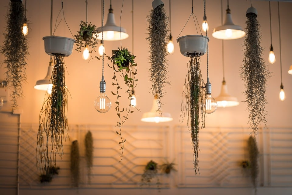 Vertical Growing Pots and Other Natural Decors for a Healthier and Aesthetically Pleasing Home