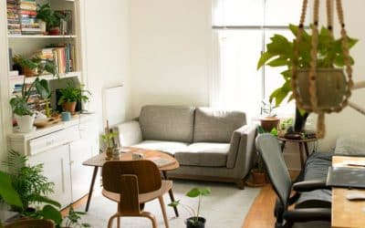The Best Indoor Plant Hangers for your Interior Fixation
